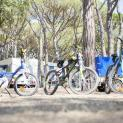 camping riembau 15686 Camping Riembau 1