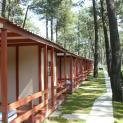 camping orbitur viana do castelo 447
