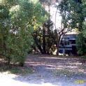 Foto de Camping Malvarrosa de Corinto en Sagunto