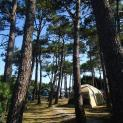 camping playa de tauran 9234