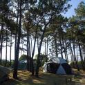 camping playa de tauran 9236