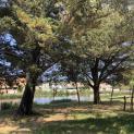 Foto de Camping Maite en L`Escala