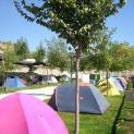 Foto de Camping Alto de Viñuelas en Beas de Granada