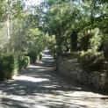 Foto de Camping Ruta del Purche en Monachil