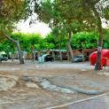Foto de Camping L`Alqueria en Platja i Grau de Gandía