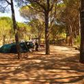 camping neus 11571