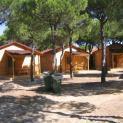 camping donana playa 3460
