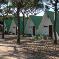 camping donana playa 3462