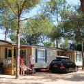 camping treumal 11545
