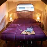 camping rural montori 18268 Habitacion doble - Lodge Montgrí