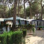 camping francas 4618